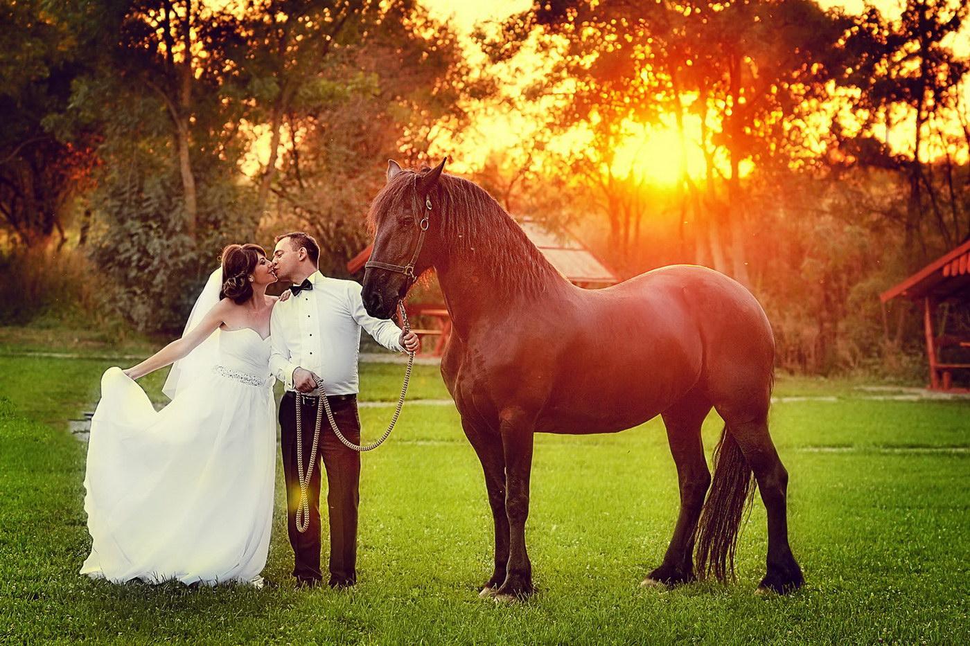 Locatii din Timisoara pentru sedinta de nunta foto si video