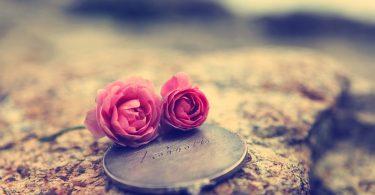 Cand nu cauti iubirea, atunci o gasesti