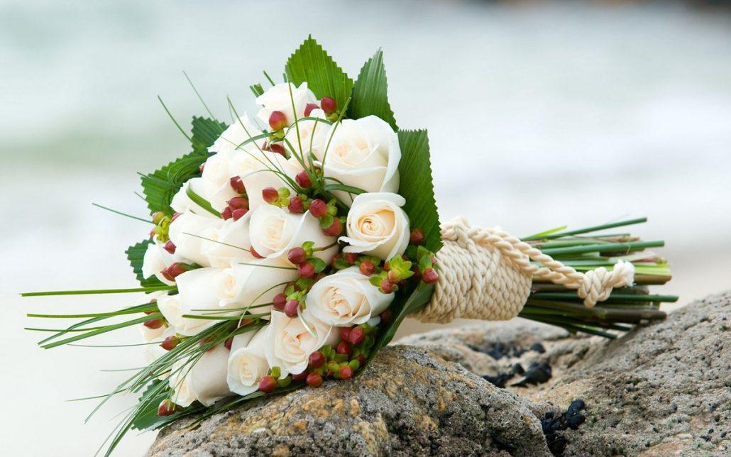 Lucruri pe care nu le stiai despre trandafiri