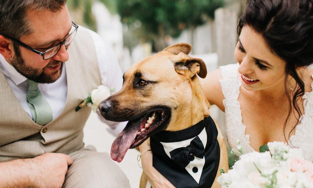 Cum sa iti surprinzi invitatii la nunta