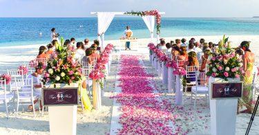 Tipuri de oameni la nunta