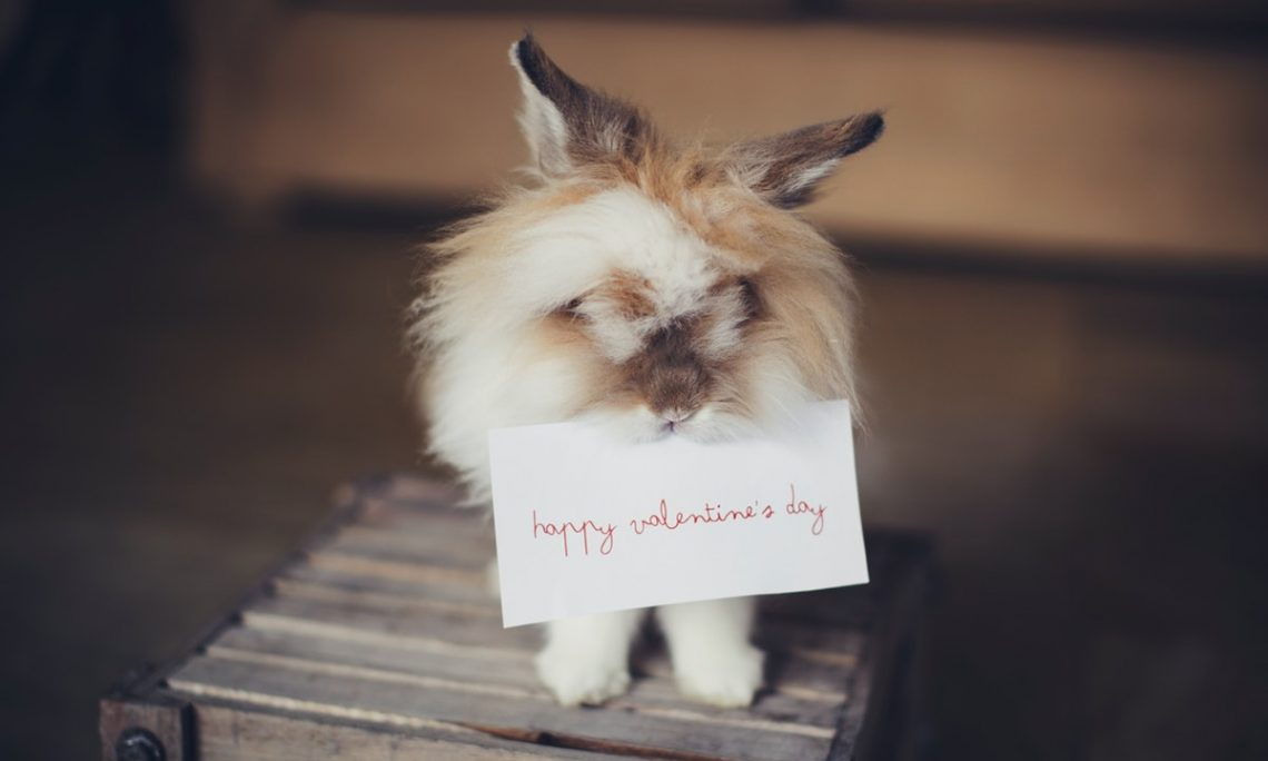Idei de cadouri pentru el de Valentine's Day